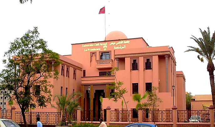 تتويج جامعات مغربية بـ