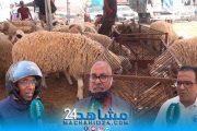 بالفيديو.. مع اقتراب عيد الاضحى.. مغاربة: