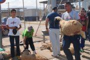 إغلاق المعابر يخلق أزمة أضاحي العيد بسبتة ومليلية المحتلتين