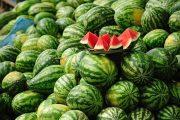 وزارة الفلاحة تنهي الجدل: فاكهة
