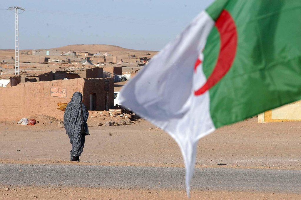 المغرب يسائل